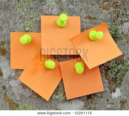 Blank memo notes