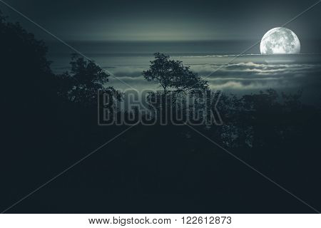 Full Moon Night. Moon Light Above Foggy Valley. Scenic Night Time Landscape. Full Moon Night Background