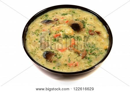 Mediterranean Style Vegetables soup with home marinated wild mushrooms and added yogurt and egg seasoned with parsley flakes and olive oil served in black porcelain bowl isolated over white