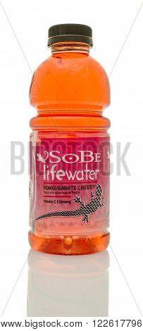 Winneconne WI - 14 Jan 2016: Bottle of Sobe lifewater in Pomegranate cherry flavor.