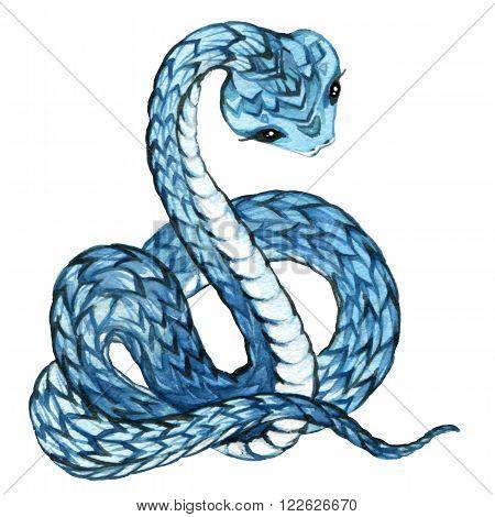 Snake. Snake watercolor drawing. Snake illustration. Cartoon Snake