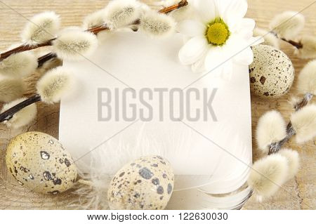 Blank Card Easter Greetings Wooden Plank,eggs,catkins,feather