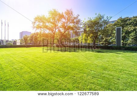 beautiful grassland in beijing in sunny day
