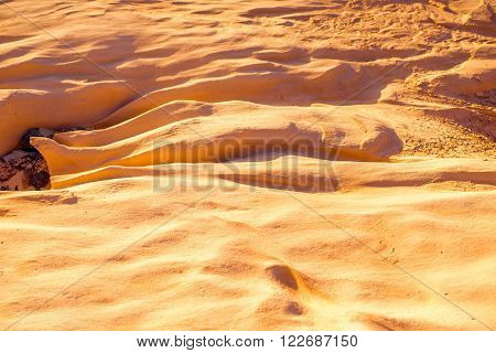 Dried riverbed with beautiful solid sand shapes on Fuerteventura island in Spain. Abstract background
