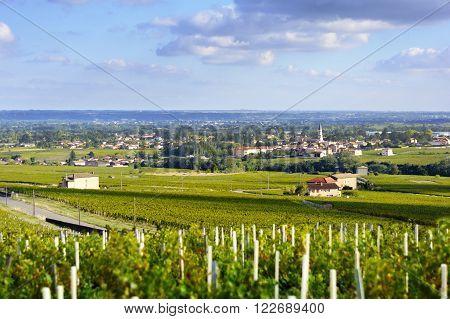 Romaneche village and vineyards at Beaujolais, France