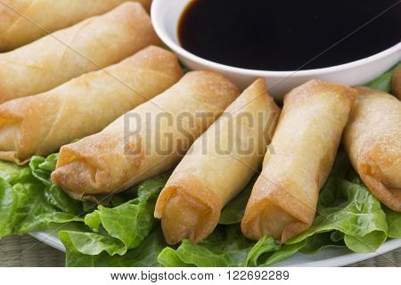 Traditional Chinese Spring Rolls with a dipping sause of soy sause ** Note: Shallow depth of field