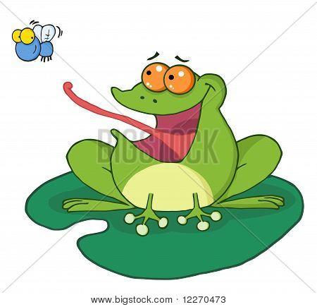 Frog Catching Bug
