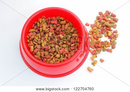Red pet feeder / bowl filled with dry food / kibble