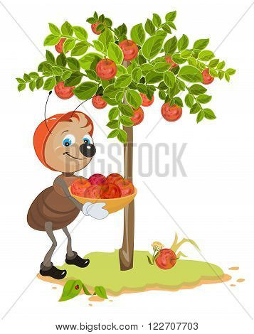 Ant Gardener gather apples. Apple tree and red ripe apples. Orchard. Cartoon illustration in vector format