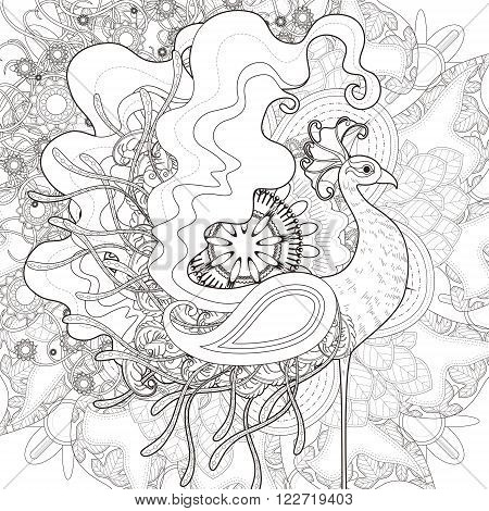 Attractive Peacock Coloring Page