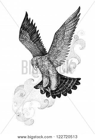 Drawing attacking hawk falcon on a background of of stylized clouds