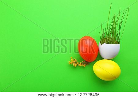 Easter eggs with fresh grass on green background