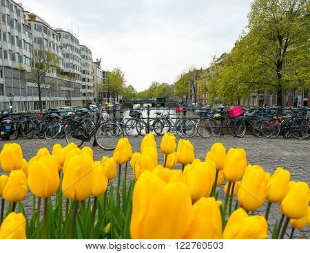 Amsterdam cityscape with bikes on the background the Netherlands.