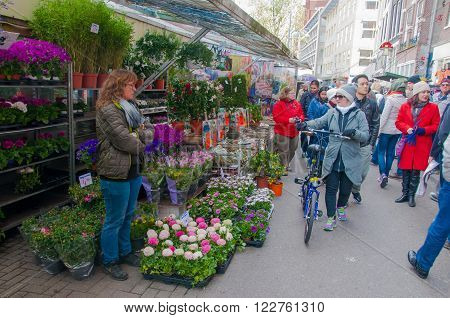 AMSTERDAM-APRIL 28: Shops inside a row of floating barges offer bulbs and houseplants on the Amsterdam Flower Market on April 282015.The Flower market is one of Amsterdam most colourful attractions.