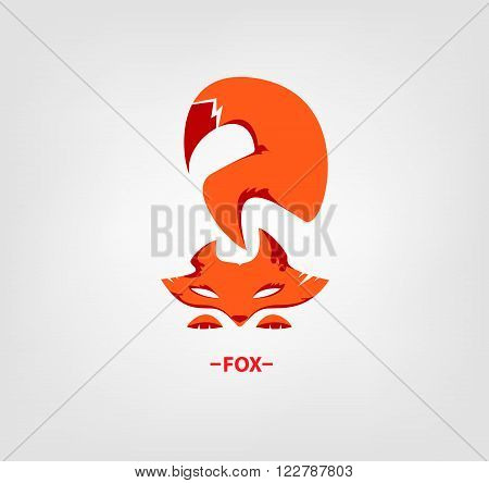 Vector image of an fox head on white background. Template fox Logo.