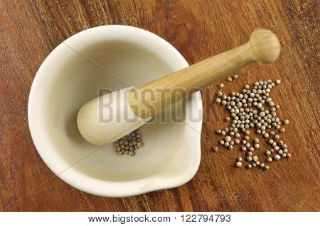 Pestle and mortar with Coriander seeds coriandrum sativum also called pak chee cilantro and chinese parsley.