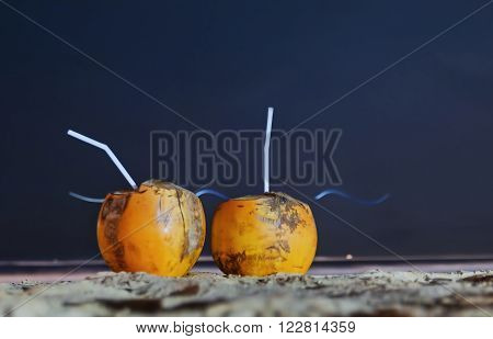 Sri Lanka. Beruwela. Two coconut on the ocean.
