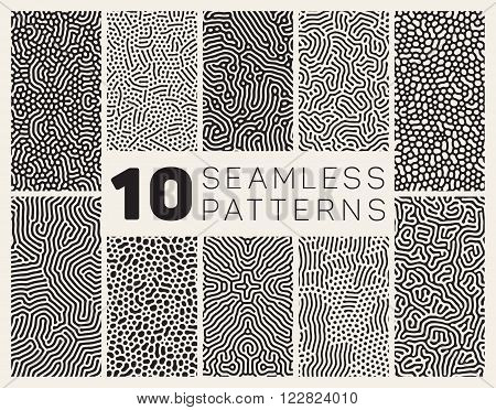 Set of Ten Vector Seamless Black and White Organic Rounded Jumble Maze Lines Patterns Abstract Background