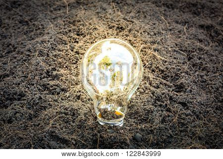 Eco friendly earth in light bulb