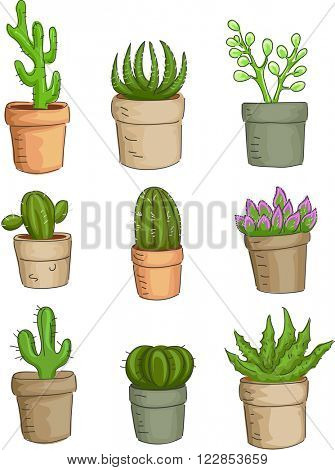 Illustration Featuring a Variety of Succulent Plants