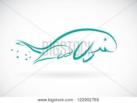 Vector image of an dugong on white background
