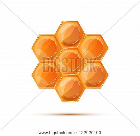Bright glossy honeycomb with shadow isolated on white
