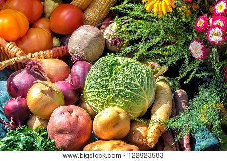 A variety of vegetables: tomatoes potatoes carrots cabbage parsley onions beets corn submitted for sale at the fair.