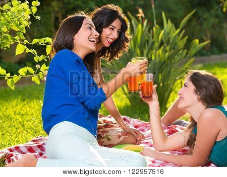 Three smiling women holding drinks while relaxing on a picnic blanket on a sunny afternoon in the park