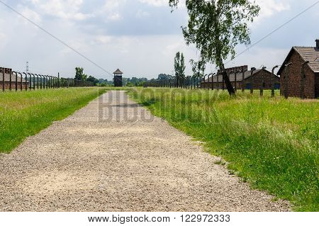 Auschwitz II - Birkenau path from rail ramp to women's barracks at Sector Ia and Sector Ib