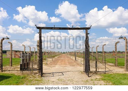 Auschwitz II - Birkenau Jews selected for immediate death in the gas chambers of Crematoria IV and V were sent off along this path