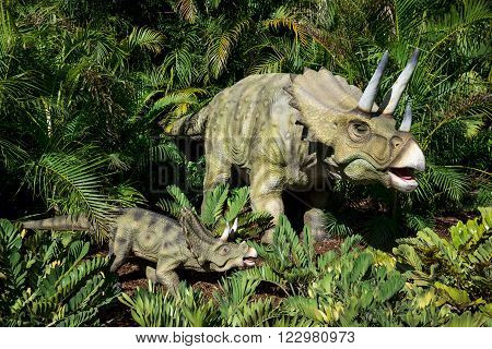PERTH, WA / AUSTRALIA - MARCH 13: Triceratops on display in Perth Zoo as part of Zoorassic exhibition in March 2016