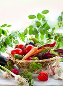 Different fresh vegetables on the table poster