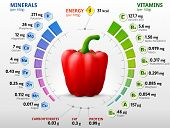 Vitamins and minerals of red bell pepper. Infographics about nutrients in capsicum fruit. Qualitative vector illustration about pepper vitamins vegetables health food nutrients diet etc. It has transparency blending modes masks blends poster