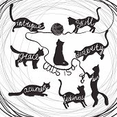 Cat quotes calligraphy lettering set on black cats silhouette. Vector illustration. Cat is a intrigue, grace, acumen, skill, dexterity, fun, friskiness poster