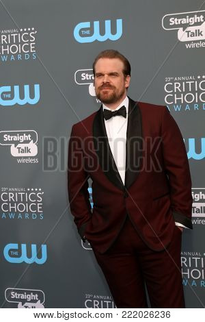 LOS ANGELES - JAN 11:  David Harbour at the 23rd Annual Critics' Choice Awards at Barker Hanger on January 11, 2018 in Santa Monica, CA