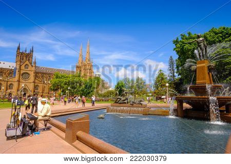 Sydney Australia Landmark Hyde Park Day Time Archibald Fountain Water Sunny Reflection Trees And Cat