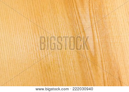 Background of wooden surface made of the ash-tree plank after primary coarse processing