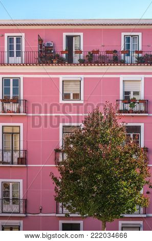 Facade of a pink old building in Lisbon with a tree in foreground
