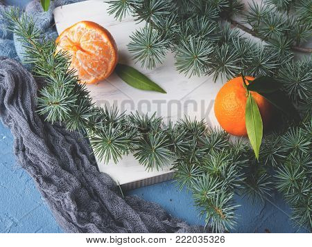 Winter tangerines frame on white rustic wooden board with spruce branches on blue background