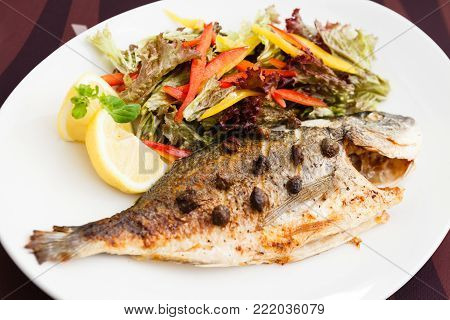 Grilled gilt-head bream fish in herbs and lemon poster