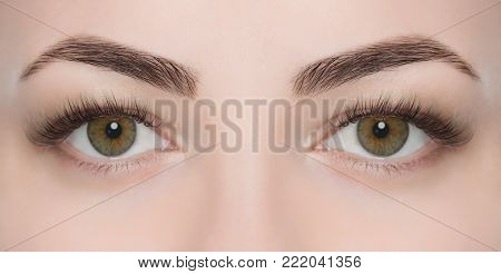 Eyelash extension procedure close up. Beautiful Woman with long lashes in a beauty salon. Look at the camera.