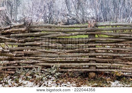 the fencing of intertwined rods against the background of growing trees nearby