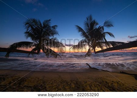 Palm trees during sunset on a beautiful tropical beach on Koh Kood island in Thailand