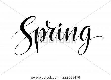 Spring word isolated on white background. Logo template and card design. Vintage lettering design element and decoration. Vector illustration EPS10