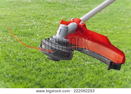 Lawnmower big head trimmer red machine on green grass in the garden