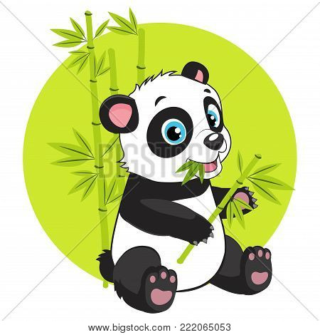 Cute Baby Panda Bear In Bamboo Forest Vector Image. Cartoon Panda Eats Bamboo Branch Vector Illustration. Panda Bear Costume. Magic Nature.