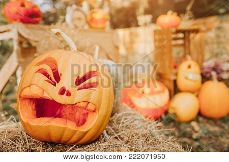 Ghost pumpkins on Halloween. ead Jack on an autumn background. Holiday outdoor decorations.