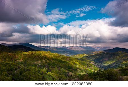 rolling hills of Carpathian mountains in spring. gorgeous landscape on a cloudy day. beautiful nature background with Borzhava mountain ridge in the distance