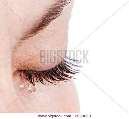 Woman In Tears