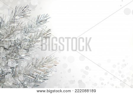 Christmas composition of fir branches and berries of viburnum on a white background isolated